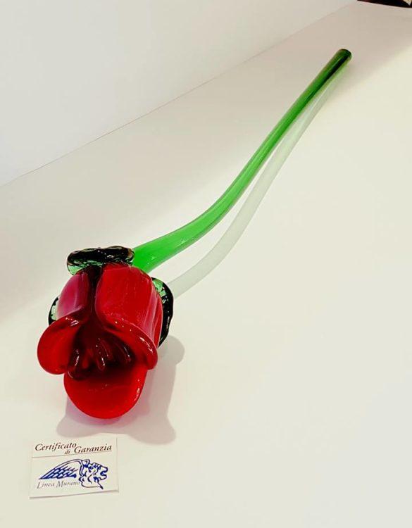Fiore di vetro di murano rosa rossa